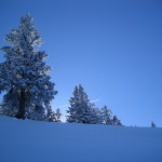 Winterlandschaft am Baumgartenschneid