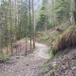 Hirschbergtrails_2